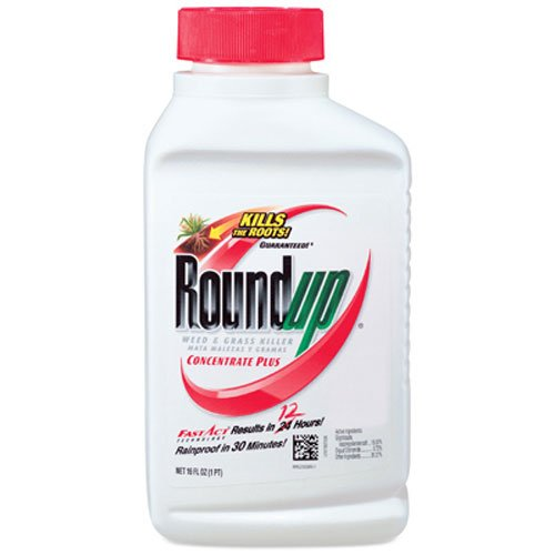 2. Roundup Weed and Grass Killer Concentrate Plus