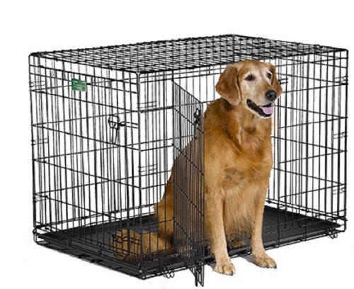 2. MidWest iCrate Metal Dog Crates