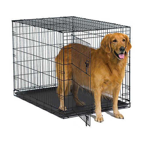 8. New World Folding Metal Dog Crate