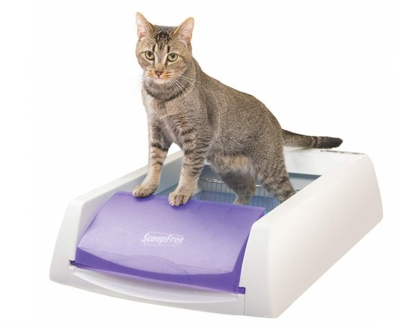 2. PetSafe ScoopFree Original Self-Cleaning Cat Litter Box, Automatic with Disposable Litter Tray and Blue Crystal Cat Litter, 2 Color Options
