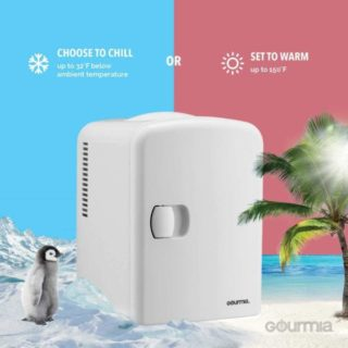 1.Gourmia GMF600 Thermoelectric Mini Fridge Cooler and Warmer - 4 Liter